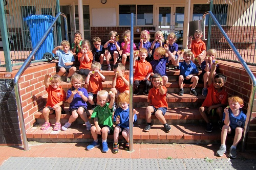 Wk 8 Kindy gold T4 Class in Focus 16 JPS