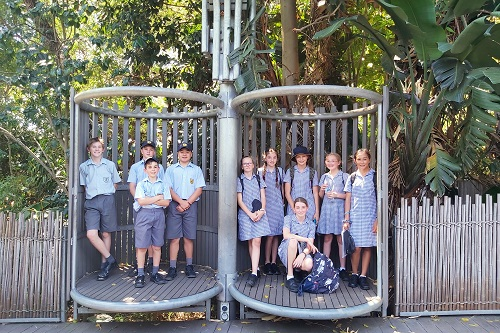 Wk 6 Yr 7 Zoo Excursion Nov 2019 1 JPS