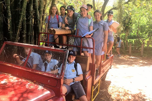 Wk 6 Yr 7 Zoo Excursion Nov 2019 2 JPS