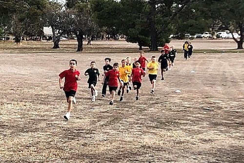 Wk 5 Primary Cross Country 1 JPS