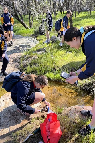 Year 9 Science at Eadine Springs - Aug 2021 (5)