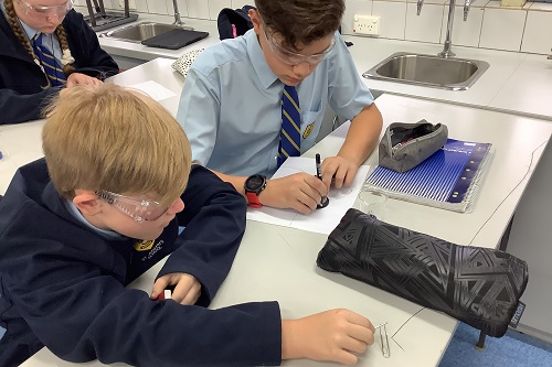 Yr 7 Science (MB) Wk 3 T2 (1)