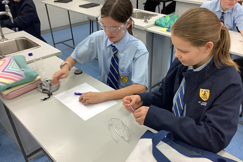 Yr 7 Science (MB) Wk 3 T2 (3)