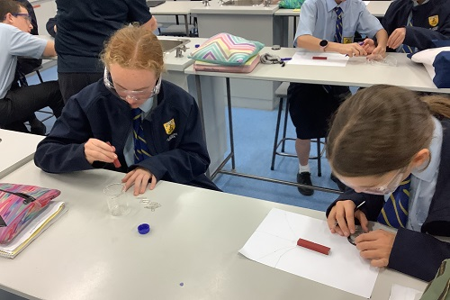 Yr 7 Science (MB) Wk 3 T2 (4)